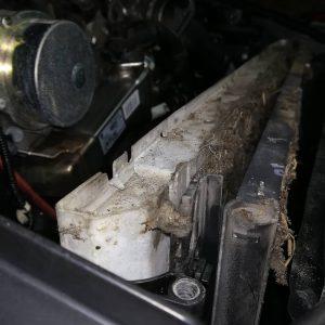 Промывка радиаторов BMW E63